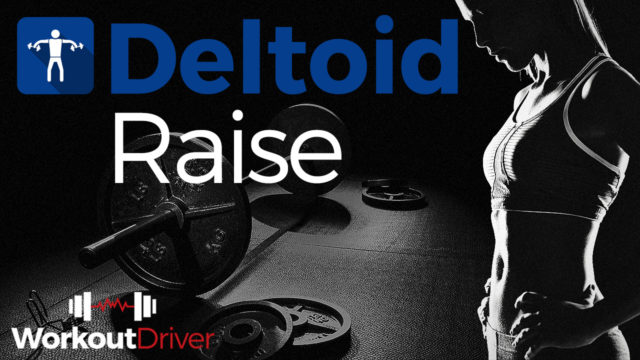 Deltoid Raise